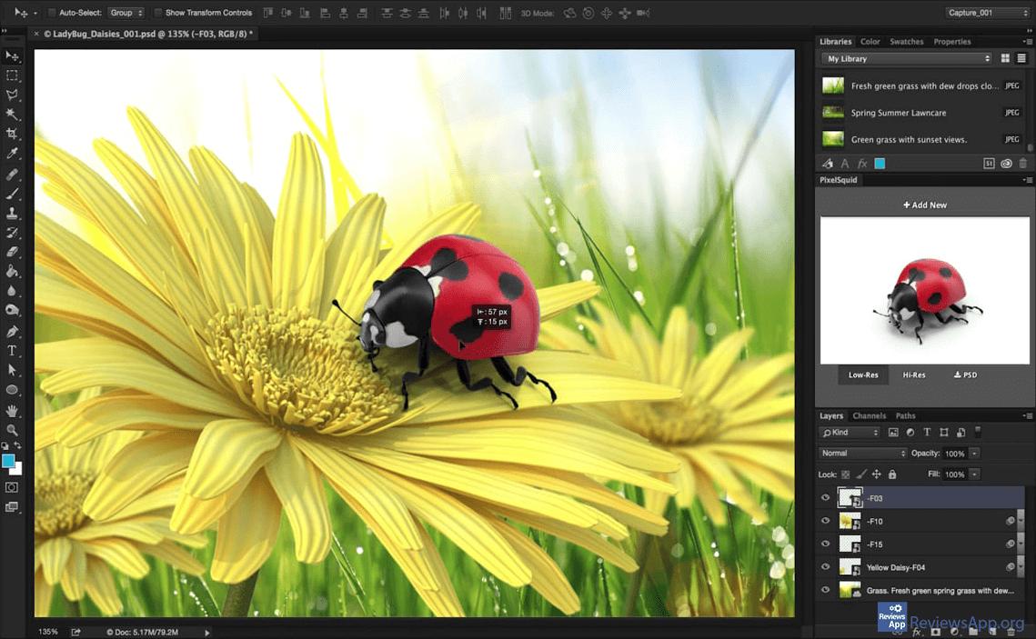 PixelSquid ladybug on dandelion