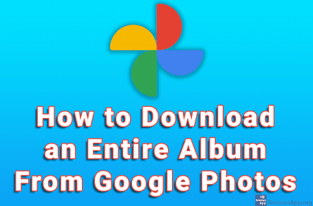 How to Download an Entire Album From Google Photos